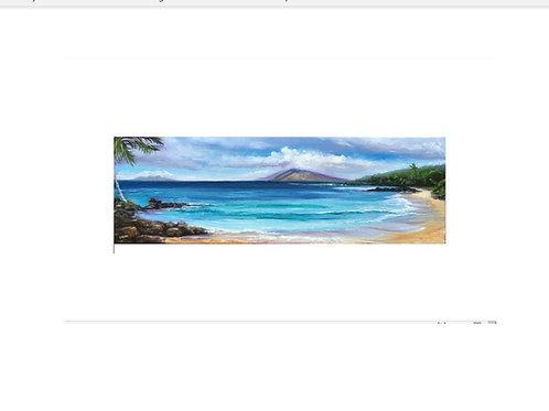 Maluaka- Maui Prince Beach