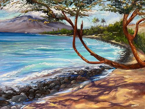 Olowalu Shore