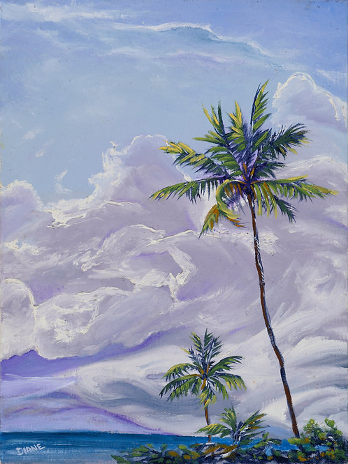 Lahaina Palm in a Meringue Sky-Maui