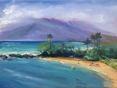 View from Wailea Beach Resort and Humble Mkt Kitchin, Ulua Beach,Maui