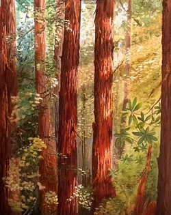 Into the Redwoods 22 x 28