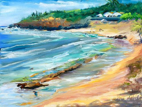 Ho'okipa- Day at the Beach