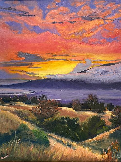 Upcountry Sunset- Maui