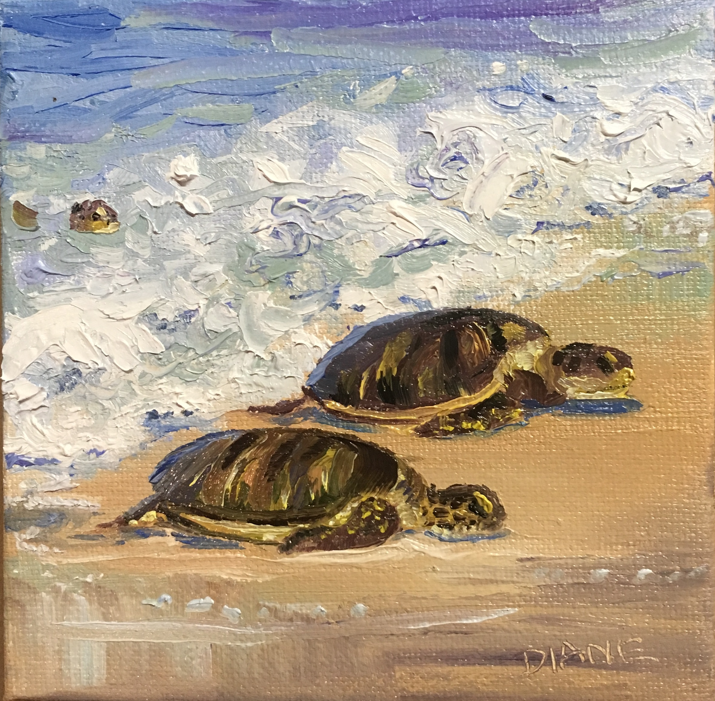 Honu Wait for Me, 5x5