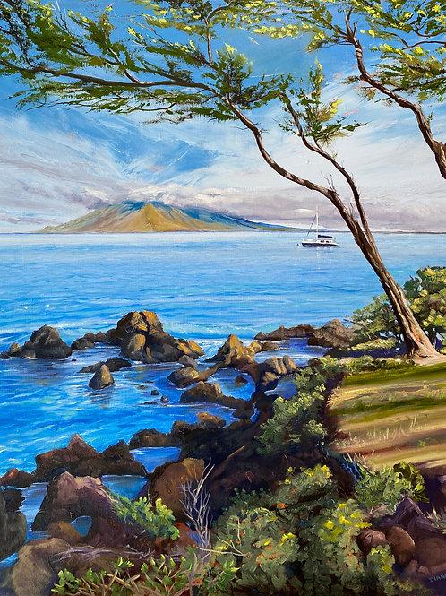 Maluaka Maui- Morning Magic - starting from