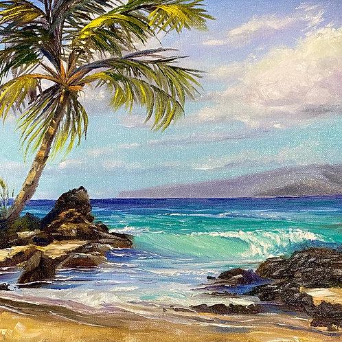 Makena Cove South- Maui
