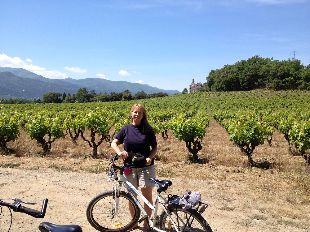 Chateau Ceret France with vineyards