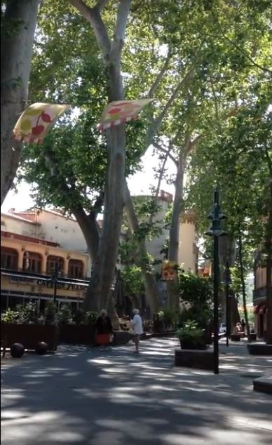 Ceret France in Cherry Season
