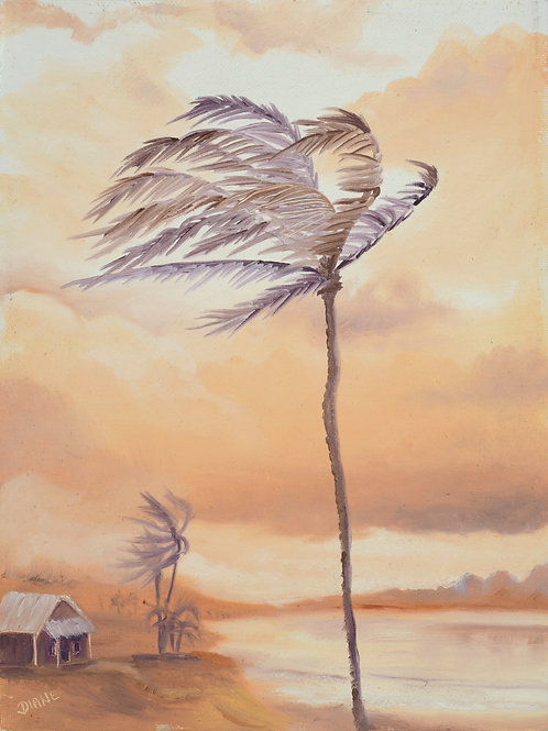 Trade Winds, Maui