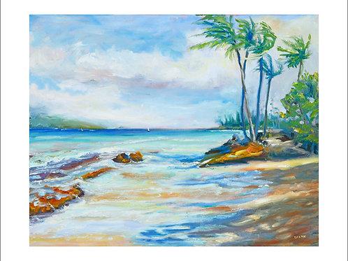 Honokowai Beach Park Day - Maui