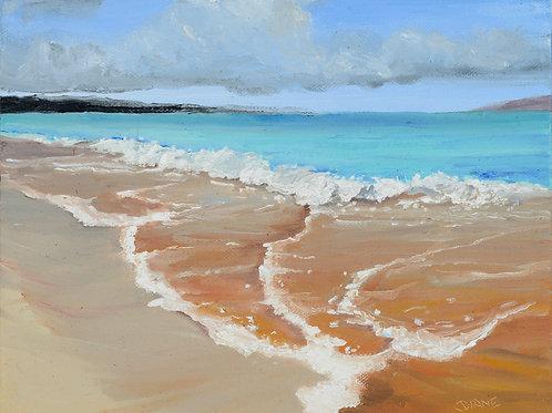 Big Beach Makena- Maui