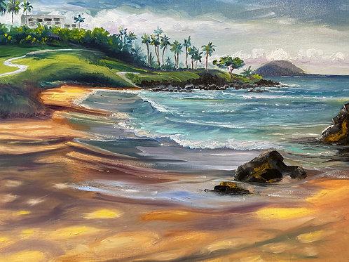 Morning Waves on Ulua Beach