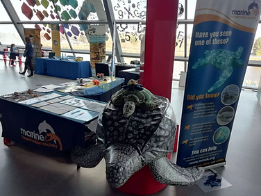The Marine Conservation Society's stall in Glasgow Science Centre March 2020