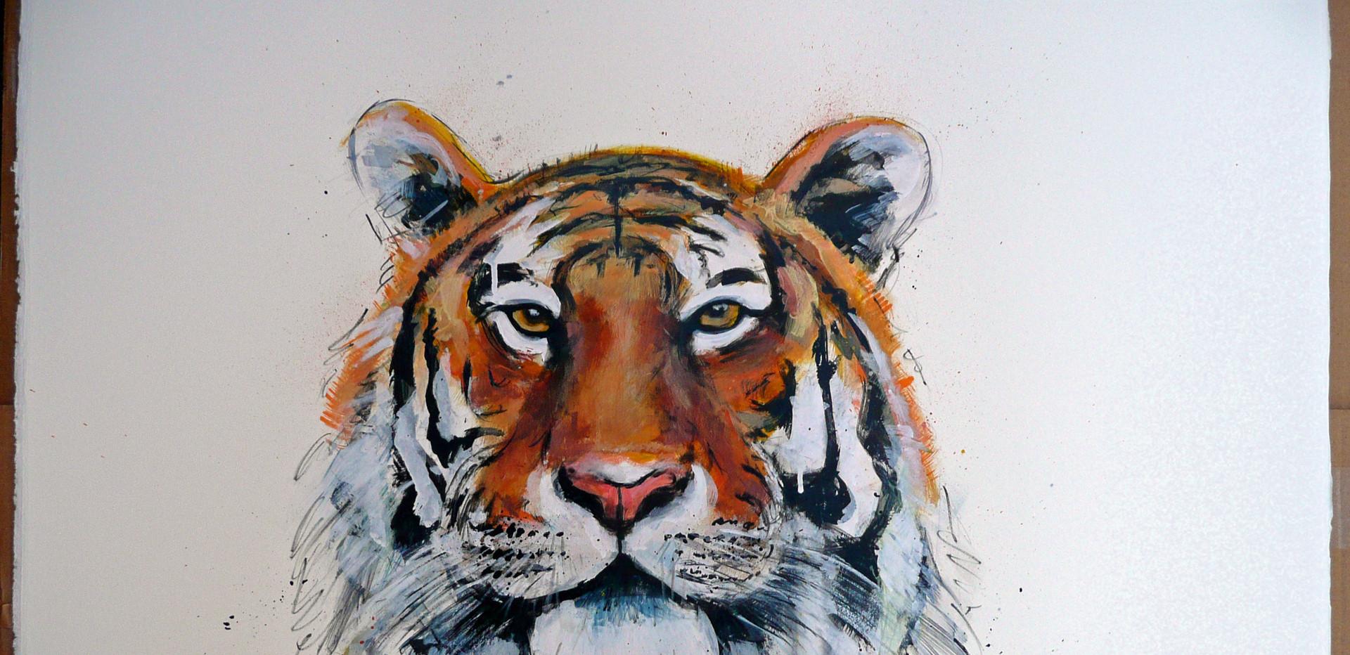 YoYo mama it's a Tiger