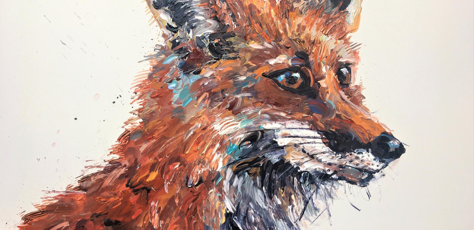 fox 16 x 18 inch