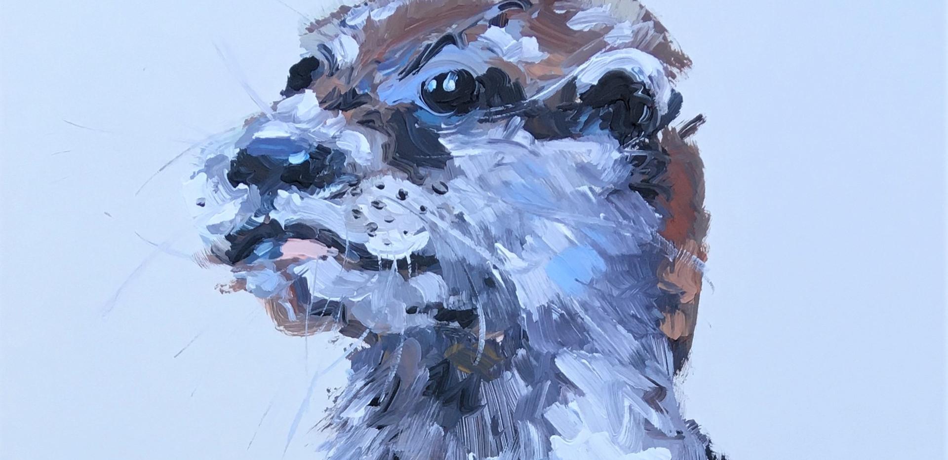 Otis Otter