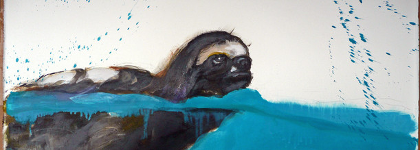 Swimming Sloth