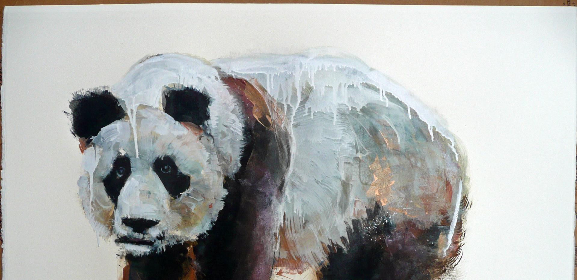 panda two.