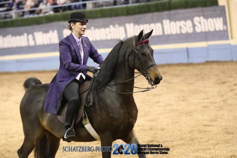 saddle seat day coat