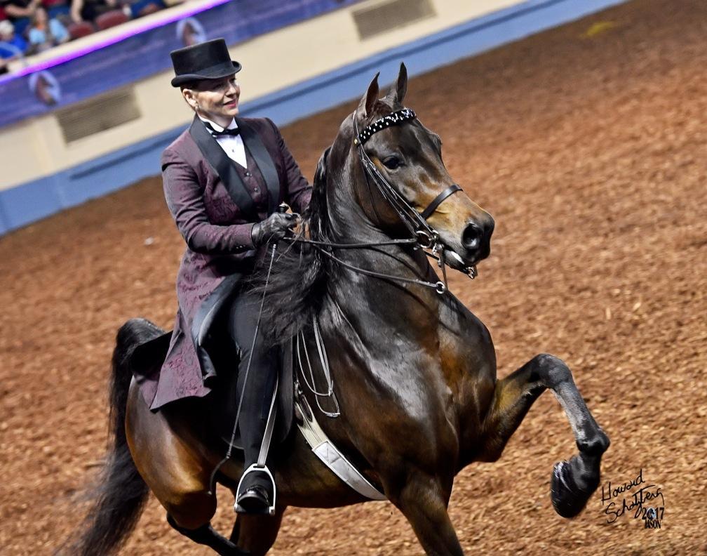 custom saddle seat suit