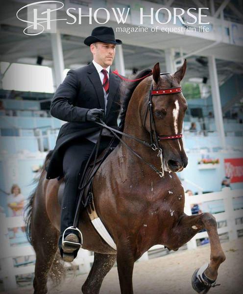 saddle seat coat