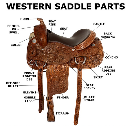 saddle .png