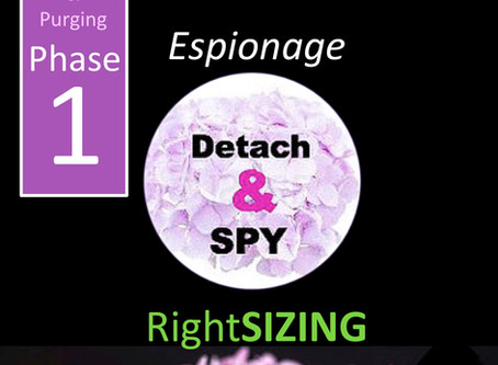 RightSIZE UP! Phase 1 Espionage