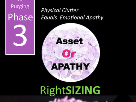 Purging: Layer Number 3: Phase 3: Asset or Apathy