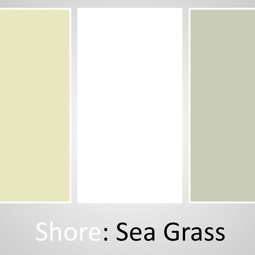 Shore Sea Grass