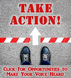 take action for site v2.png