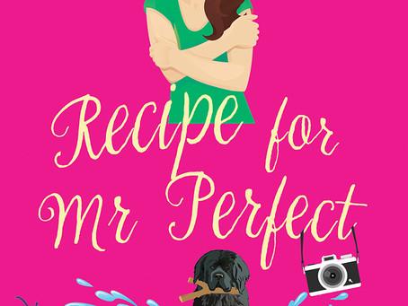 Recipe For Mr Perfect