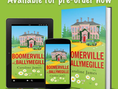 Boomerville at Ballymegille by Caroline James.