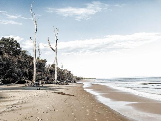 My Simple Island Life: The beach, the ocean and me
