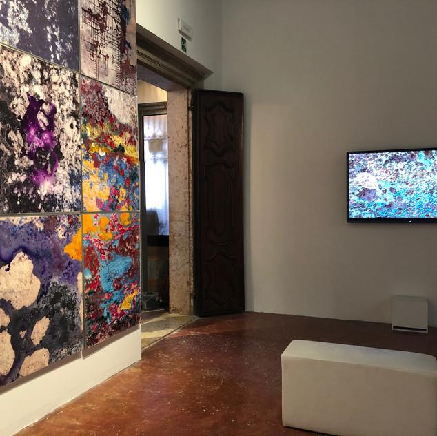 View Exhibition