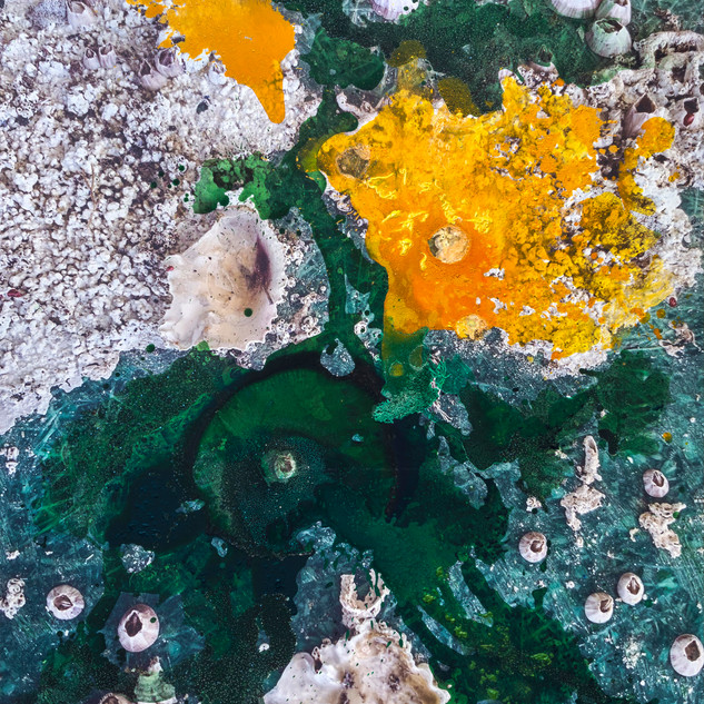 """From the series """"Jaffa port surface"""""""