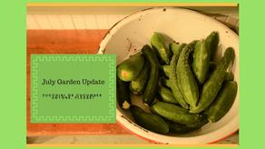 July Garden Update- Zucchini or Cucumbers Anyone, PLEASE?
