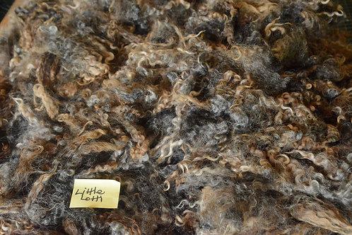 Little Lotti's Fleece