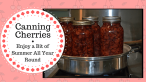 Canning Cherries- Enjoy a Bit of Summer All Year Round