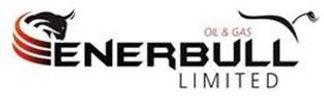 Enerbull logo.jpg
