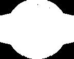 DistrictSocial_Logo-White_700.png
