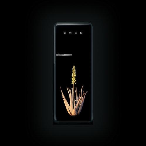 Smeg Retro Fridge (Aloe Vera)