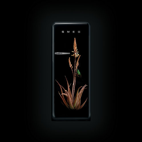 Smeg Retro Fridge (Aloe Sunbird 2)