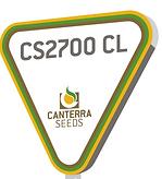 CS2700 pic.PNG