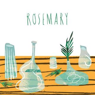 rosemary /