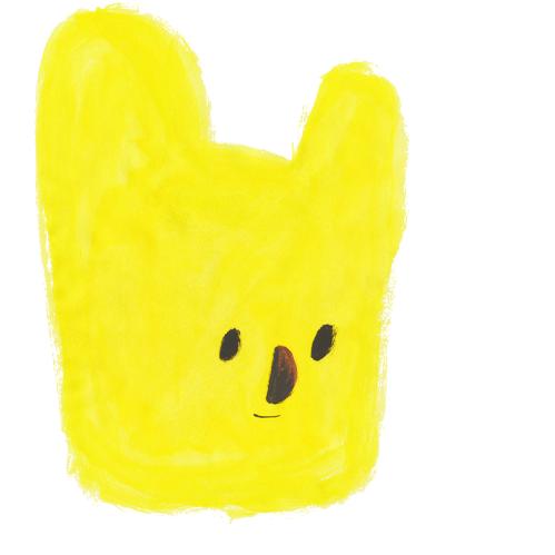 sun bear /