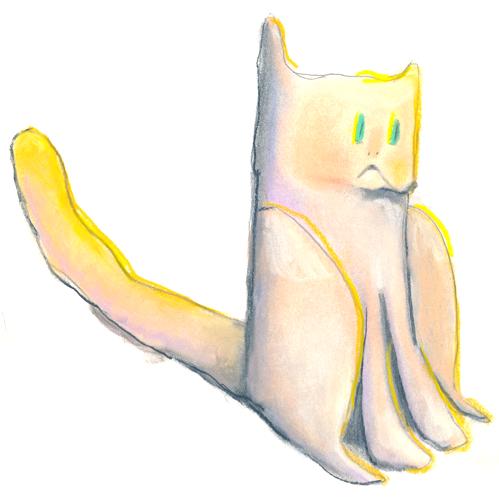 sun cat /