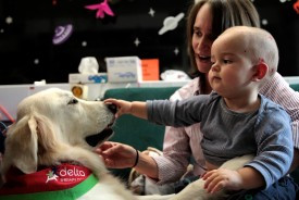 The Musical Therapy Dog