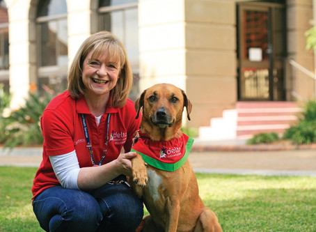 Therapy Dogs gather to celebrate 'pet effect' milestone