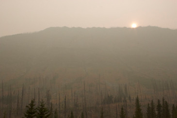 Smoke from forest fires