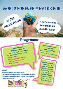 Flyer_Programm.png